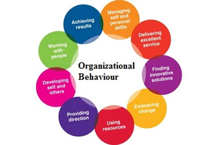 Looking for Organisation Behaviour Assignment Writing Help
