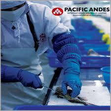 Pacific Andes (Holdings) Ltd